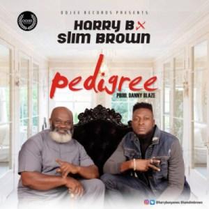 Harry B - Pedigree ft. Slim Brown